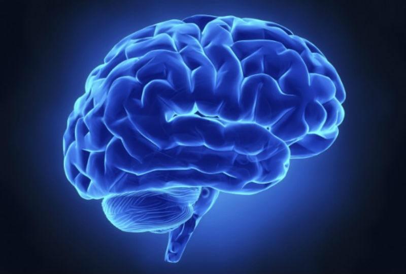 Common Brain Infections– Types & Symptoms